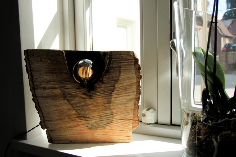 Free boomstam lamp hout with nachtkastje boomstam for Design lamp hout