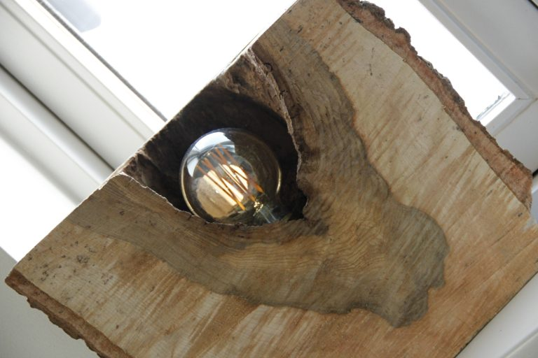 boomstam lamp hout
